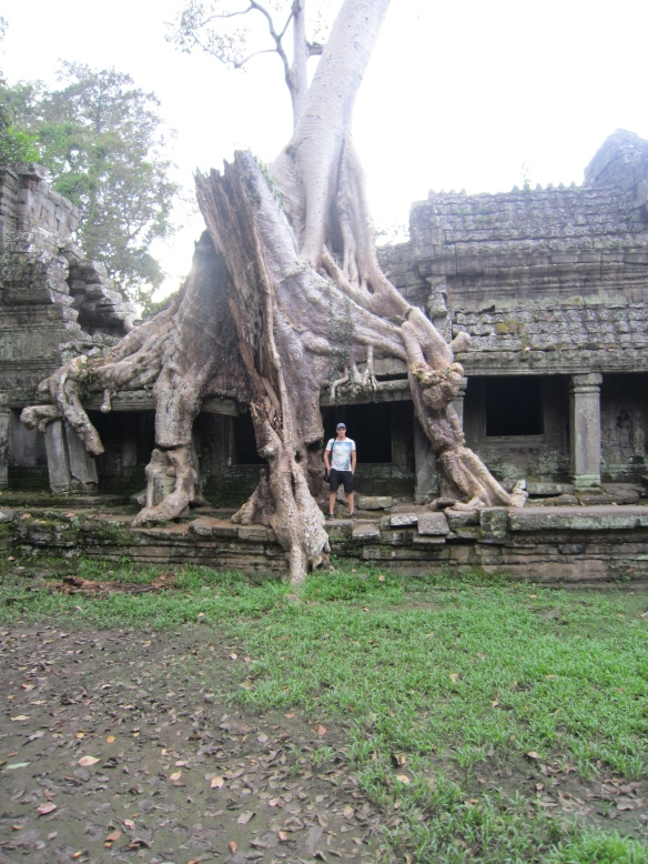 Jungle temple Angkor Wat