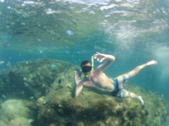 A OK reef perhentian
